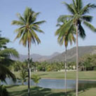 Campo de Golf and Marina de Golf