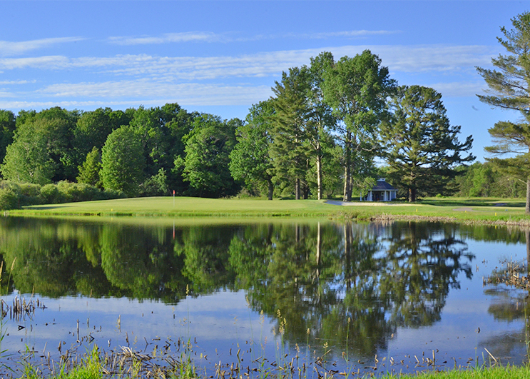 Golf Glory In Michigan