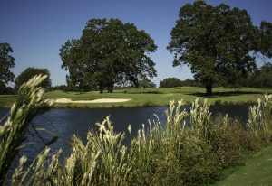 North Alabama Golf The Shoals