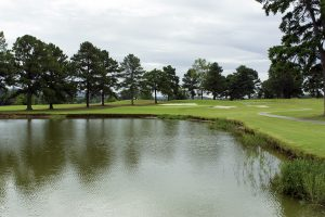 North Alabama Golf Goose Pond