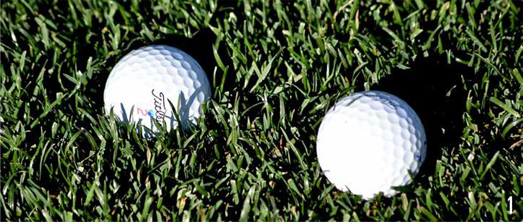 rough golf lies photo 1